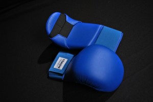 Tokon Martial Arts Blue WKF Gloves