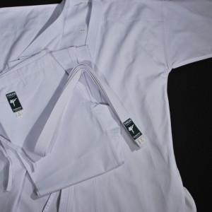 Tokon Kodomo Karate