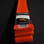 Orange Belt 1