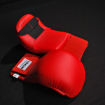 Tokon Martial Arts Red Gloves